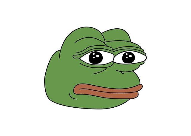 "obrázek žáby ""pepe"""